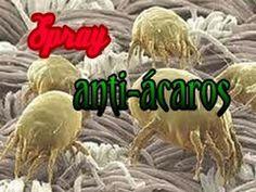 Hacer Spray Anti Acaros