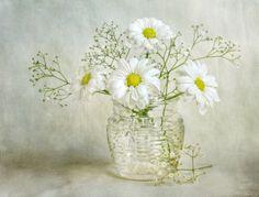 Simply white by Mandy Disher, via 500px