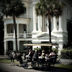 Carriage Tour in Charleston
