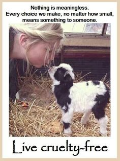If you would never hurt an animal, why are you ok paying other people to do it for you?