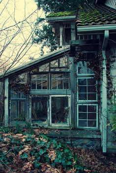 I need a greenhouse...one just like this.  Surely we could just tack it on one side of this old house or the other...