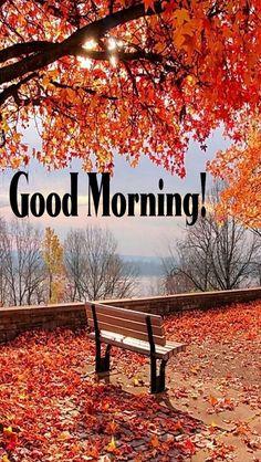 Good Morning Sunrise, Good Morning Nature, Good Morning Happy Sunday, Good Morning Cards, Good Morning Flowers, Good Morning Greetings, Good Morning Good Night, Good Morning Wishes, Good Morning Quotes
