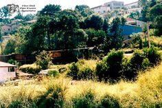 Tudo um Pouco: Ferrovia  04 - Jaguariaíva
