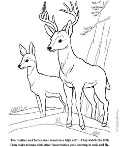 Coloring Pages & Activity Pages Free Printables - Easy to use site with large catalog of themed pages. | Raising Our Kids