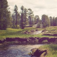 A little stream wanders through a forest meadow, near Donnelly Idaho. This little meadow was so peaceful and quiet - I just wanted to sit for hours watching and listening! This photograph is printed o