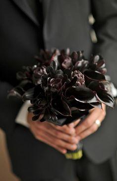 Black Calla Lillies