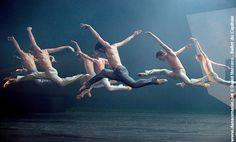 Ballet - Danza - Movimiento - Escencia del cuerpo