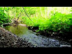 【Natural Sounds】Reverb River/Help Study and Work