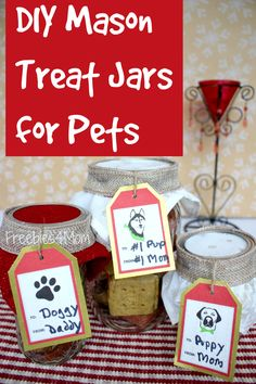Look what I made for my puppy ~ DIY Mason Treat Jars Gifts for Pets ‪‎SeasonsTreatings‬ http://freebies4mom.com/treatjars ‪#ad‬