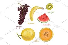 2996374 watercolor papaya fruit color illustration hand background water drawn white vector isolated nature food art fresh paint freshness diet vegetarian tropical logo set symbol leaf painting juicy fruits exotic healthy mango orange raw variety grapes green view organic closeup top ripe dragon vegetables strawberry apple delicious colorful kiwi lemon peach autumn collection design dragon fruit drawing harvest health ingredient melon natural nutrition passionfruit red seed sketch slice…