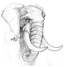 Elephants A Sunday Sketch. # Sketch # sketch # elephant # animals # # draw dr animals animal animal sketches A sketch Elephant Sunday Sketch draw Animals Pencil Sketch Drawing, Pencil Art Drawings, Doodle Drawings, Art Drawings Sketches, Drawing Base, Drawing Ideas, Easy Drawings, Drawing Tips, Drawing Pictures