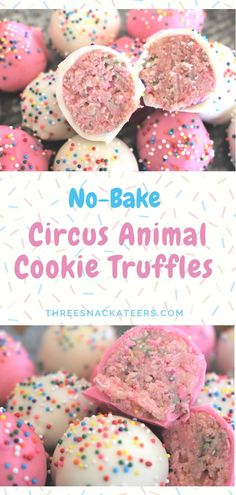 No-Bake Circus Animal Cookie Truffles No-Bake Circus Animal Cookie Truffles Making sweet treats doesn't need to turn your kitchen into a zoo. All you need are 5 simple ingredients to create these adorable No-Bake Circus Animal Cookie Truffles. Dessert Party, Oreo Dessert, Appetizer Dessert, Party Sweets, Köstliche Desserts, Delicious Desserts, Yummy Food, Tasty, Bolo Cookies And Cream