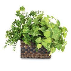 greenery basket arrangement