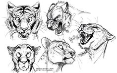 ....Sketches of big and cute cats....