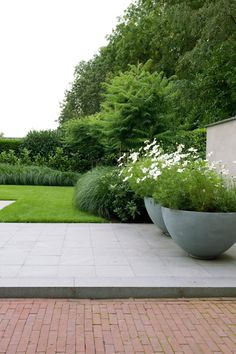 Garden by jaap sterk hoveniers - Garten - Contemporary Garden Design, Small Garden Design, Landscape Design, Modern Design, Contemporary Landscape, Back Gardens, Small Gardens, Outdoor Gardens, Modern Gardens