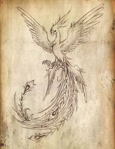 Tatto Ideas 2017 Flying Phoenix Bird Tattoo Design