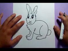 Como dibujar un conejo paso a paso 6 | How to draw a rabbit 6 - YouTube