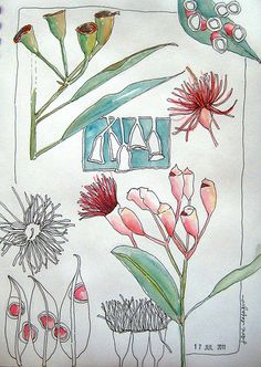 Watercolor botanicals by Jane Lafazio