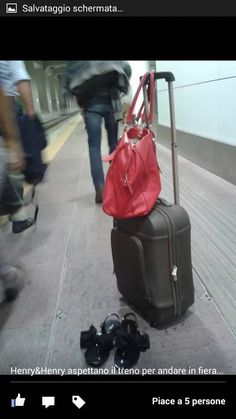 traveling with my henryandhenry