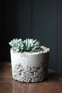 How to make contemporary concrete planters for your garden. Find more budget gardening ideas at Decorator's Notebook blog.