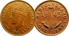 Newfoundland was actually a separate country for about 50 years prior to becoming a Canadian province.     This is the only coin out there with a carnivorous plant on it.
