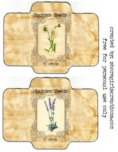 Shoregirl's Creations: Seed Packets - Modern Templates Printable Free, Printable Labels, Printable Paper, Free Printables, Diy Envelope, Envelope Design, Envelope Templates, Box Templates, Seed Packet Template