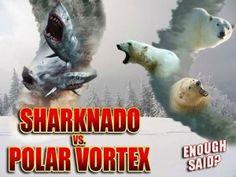 Sharknado vs. Polar vortex