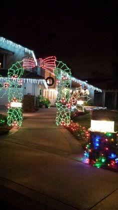 Christmas Lights Christmas Light Displays, Christmas Lights, Christmas Tree, Happiness, Holiday Decor, Winter, Home Decor, Christmas Fairy Lights, Teal Christmas Tree