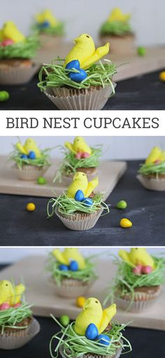 Easy DIY Bird Nest C