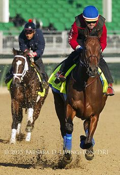 AMERICAN PHAROAH, Georgie Alvarez up, with MATERIALITY following, this morning at @ChurchillDowns. #KentuckyDerby2015