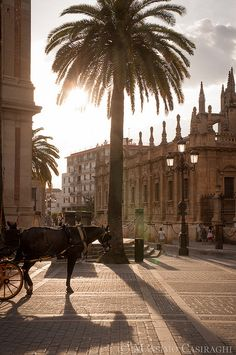 Sunset in Seville, Spain