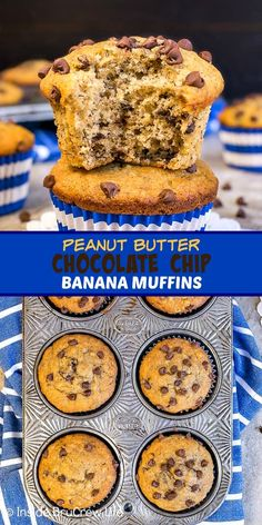Peanut Butter Chocolate Chip Banana Muffins - these soft fluffy banana muffins are loaded with chocolate chips and peanut butter. Try this easy breakfast muffin the next time you have ripe bananas on the counter. Chocolate Chip Cookies, Banana Chocolate Chip Muffins, Chocolate Peanut Butter, Chocolate Chips, Banana Nut, Easy Breakfast Muffins, Healthy Muffins, Eat Breakfast, Ripe Banana Recipes Healthy