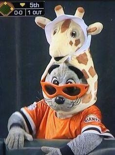 Lou Seal... supporting the Giraffe