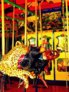 Carousel Animals | Flickr - Photo Sharing!