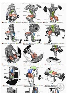 Leg Day Workout | #1stInHealth #Workout #FitnessWorkout #LegDay