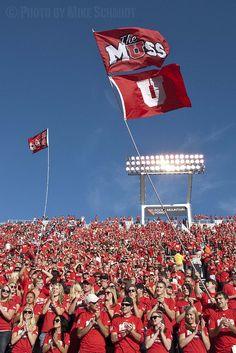 Utah Utes Fans by Mike Schmidt