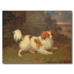 vintage spaniel paintings | Vintage Calvalier King Charles Spaniel Painting Post Cards