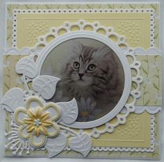 Cat Cards, Birthday Cards, Cats, Frame, Home Decor, Bday Cards, Picture Frame, Gatos, Decoration Home
