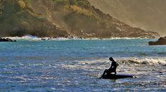 """https://flic.kr/p/CdnYx1   il mare  d'inverno ...     è tornato  il sole dopo  giorni di mareggiata , un tiepido sole d'inverno ... cammino sulla sabbia in mezzo alle alghe  portate dal mare  , nell'aria ancora un forte odore di salsedine ...  mi fermo sulla battigia  e guardo in lontananza  il """" pescatorello """" , il piccolo intruso  della baia  tanto amato dai turisti che resiste ad ogni mareggiata ...      DSC_0918"""