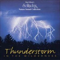 Thunderstorm in the Wilderness by Dan Gibson's Solitudes
