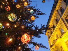 Switzerland スイス ジュネーブ クリスマスには大きなモミの木にガラス細工のオーナメントや可愛い飾り付けがつけられる。街の真ん中に飾られて、夜は幻想的。 クリスマスは部屋にモミの木を置きたい。