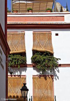 Spanische #Jalousien, wie man sie in #Sevilla findet. Die Bastmatten lassen sich auf- und zurollen.