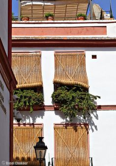 Calor en Sevilla  Spain