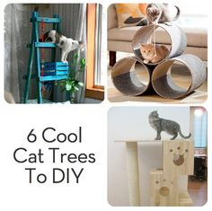 6 Very Cool and DIYable Cat Trees