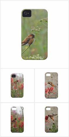 HUMMINGBIRD CASES