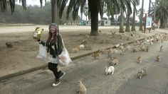 Funny pictures of the day - 101 images - Where Do All Those Rabbits Come From (gif)