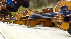 row of violins for sale at an old Violin shop  in Burlington, Vermont.