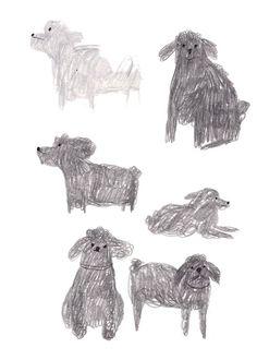 Recherches de chiens