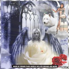 angel wolf indian