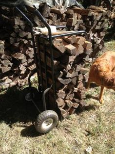 This cart lets you easily move up to of split logs. In addition to a dolly-like design, it has a pair of sturdy L-. Metal Bins, Wood Cart, Fall Clean Up, Fire Wood, Logging Equipment, Rough Wood, Wood Tools, Wood Storage, Sheet Metal